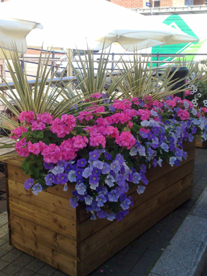 Bespoke planters in Hungerford.jpg