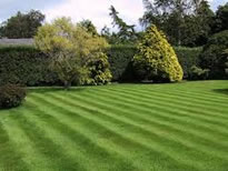 Garden-maintenance-Services-in-Ashmansworth.jpg