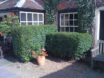 Grounds-care-in-Ashmansworth.jpg